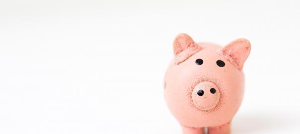Savings bank pig